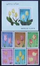 Afganistan-1997-Flowers,Tulipa,6 st.+1 S/Sh,MNH,AFG 029