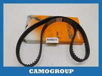 Timing Belt Contitech For Volkswagen Passat AUDI A4 CT849