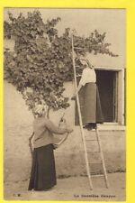 cpa FRANCE Vie d'Autrefois Campagne Land life LA DERNIERE GRAPPE Vigne Raisins