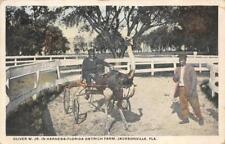 OLIVER W. JR. OSTRICH FARM JACKSONVILLE FLORIDA BLACK AMERICANA POSTCARD 1916