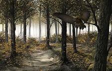 Incorniciato stampa-CACCIA GUFO in legno (foto poster arte uccello animale bosco preda