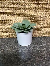 """New 4 """" Succulent Decorative Artificial Dudleya in White Cylindrical Pot"""