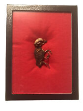 Real Mummified Pig Fetus in Glass Topped Riker Display Case (Free Shipping)