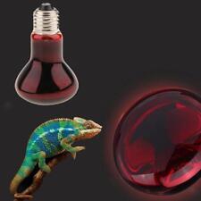Ampoule E27 pour Reptile Tortue Lampe Infrarouge Chauffage Amphibie 100W