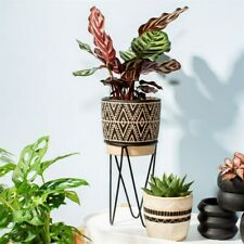 Nomad Planter with Wire Stand - Sass & Belle