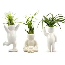 Nw Wholesaler Set of 3 White Air Head Figurines with Live Tillandsia Air Plants
