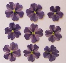 24 Perfect Pressed Flowers - Small Lavender Star Verbena
