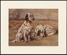 "ENGLISH SETTER DOGS "" WORKING PARTNERS "" LOVELY DOG PRINT MOUNTED READY TO FRAME"