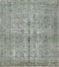 Distressed Semi Antique Overdyed Green Tebriz Area Rug Hand-knotted 9'x9' Square