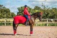 New Dark Horse Team Competition Fleece Exercise Sheet Winter Riding Horse