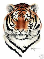 BENGAL TIGER  watercolor 8 x 10 ART print signed by Artist DJ Rogers