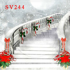 Christmas 10'x10' Computer-painted Scenic Photo Background Backdrop SV244B881