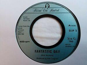 "Haircut One Hundred - Fantastic Day - 7"" Vinyl Single"