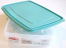 Rubbermaid Egg Keeper - Deviled Egg Food Container - Teal Lid. Holds 20 Eggs!