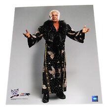 WWE RIC FLAIR 16X20 UNSIGNED PHOTO FILE PHOTO 1 VERY RARE