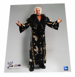WWE NATURE BOY RIC FLAIR 16X20 UNSIGNED LICENSED PHOTOFILE PHOTO 1 VERY RARE