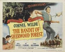 THE BANDIT OF SHERWOOD FOREST Movie POSTER 22x28 Half Sheet Selma Erge  Mehmet