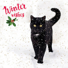 Charity Christmas Card Pack - It's Snowing! (10 Cards of 1 Design)