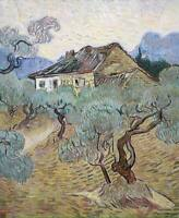 Vincent Van Gogh Olive Trees Fine Art Print on Canvas HQ Painting Giclee Small