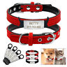 Soft Suede Leather Personalized Dog Cat Collars & Slide-On Tag Pet Puppy XXS-S