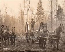 4 LOGGERS HORSES BIG WHEELS MICHIGAN LOGGING PHOTO RARE