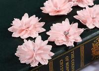 CraftbuddyUS 10 Pink Crystal Glass Stick on,Sew On Fabric Flowers Motifs Craft