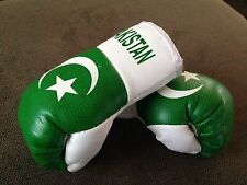 PAKISTAN FLAG Mini Boxing Gloves