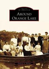 Around Orange Lake, NY, Patricia A. Favata, Images of America