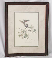 Hummingbird & Flowers Limited 59/500 Lithograph-Christina Smith-Matted/Framed