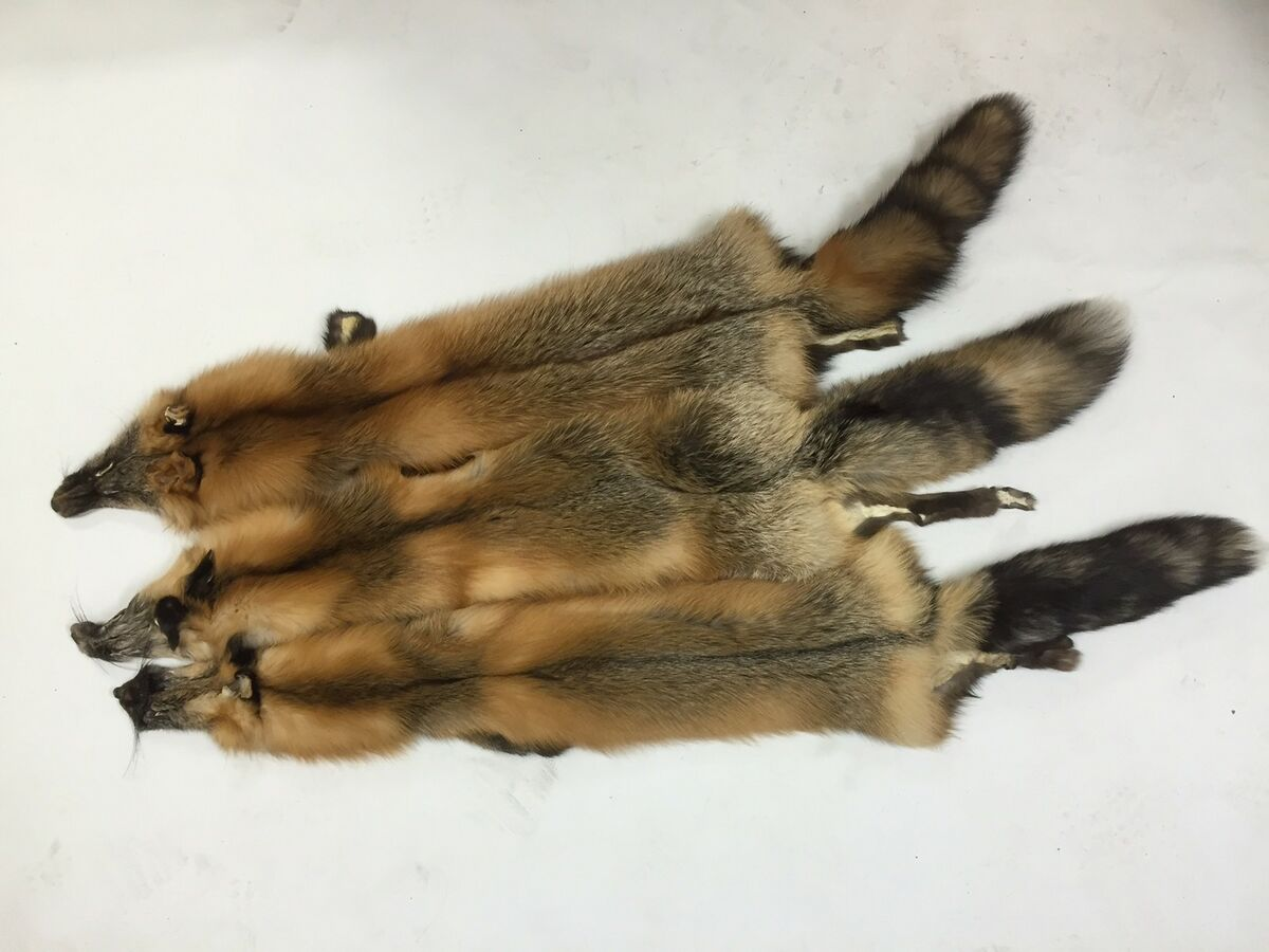 Minnesota Natural Fur