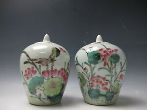 A Pair of Chinese Beautiful Butterfly Flower Porcelain Pot Jar
