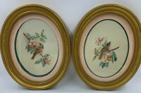 Homco Home Decor Framed Prints Birds Gold Oval Kay Lamb Shannon Vtg USA READ