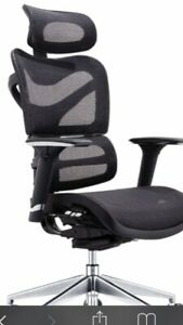 Brand New Deluxe Ergonomic Executive Full Mesh Task Office Chair With Headrest