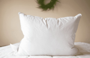 Pacific Coast Feathers and Down Pillow Featured at Hyatt Properties King Size