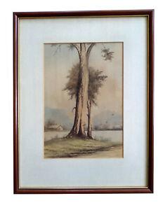 Vintage Watercolour Painting - 'Creek Sentinel, by T. R. Amies (1883-1973)