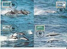 WWF 4 x Card - Montserrat 1990 - Vissen Dolfijn / Fish Dolphin (094)