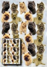 Cairn Terrier Dog Gift Wrapping Paper By Starprint - One sheet plus gift card