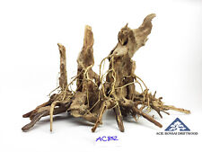 Masterpiece Stump A*** Natural Root Style by Acie Bonsai Driftwood-Size XL-AC852