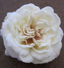"Large 5 1/2"" Cream White Rose Silk Flower Hair Clip,Wedding,Prom,Dance,Bridal"