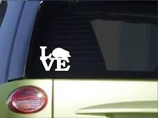 "Hedgehog love sticker *H167* 6"" vinyl cage decal"