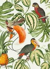 Parrot Birds Wallpaper Tropical Exotic Paradisio Toucan Flowers Vinyl Erismann