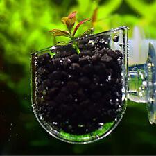 Clear Acrylic Glass Plant Pot Cup Holder Shrimp Aquarium Fish Tank Aquatic Decor