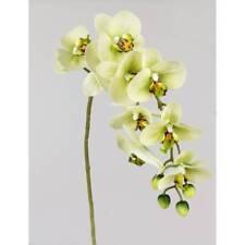 künstliche Deko Orchidee Real Touch L. 80cm grün Formano