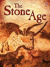Stone Age (Beginners) (Beginners Series),Jerome Martin