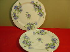 Rossetti China Hand Painted MEADOW BELLE Two Dinner Plates