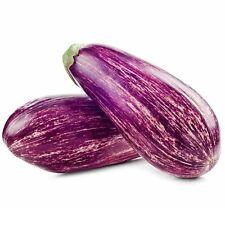 """100 SEMI MELANZANA LISTADA DE GANDIA """"AMBURGINE-Eggplant"""" Solanum melogena"""