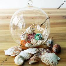 100gr mixed beach sea shells home wedding aquarium decoration handmade craft