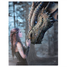 Once Upon a Time Dragon Anne Stokes Canvas Wall Plaque Sign 25cm X 19cm