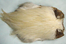 Cou de coq Indien BLANC montage mouche seche fliegen fly tying rooster neck dry