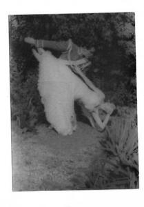 CARL VAN VECHTEN ORIGINAL PHOTO DANCERS IN THE GARDEN VIII-V10